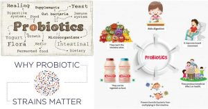 Probiotic strains and their Human benefits