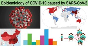 Epidemiology of COVID-19 caused by SARS-CoV-2