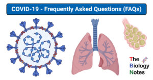 COVID-19 - Frequently Asked Questions (FAQs)