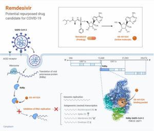 Remdesivir- Potential Repurposed Drug Candidate for COVID-19