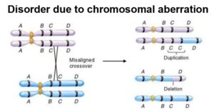 Disorder due to chromosomal aberration