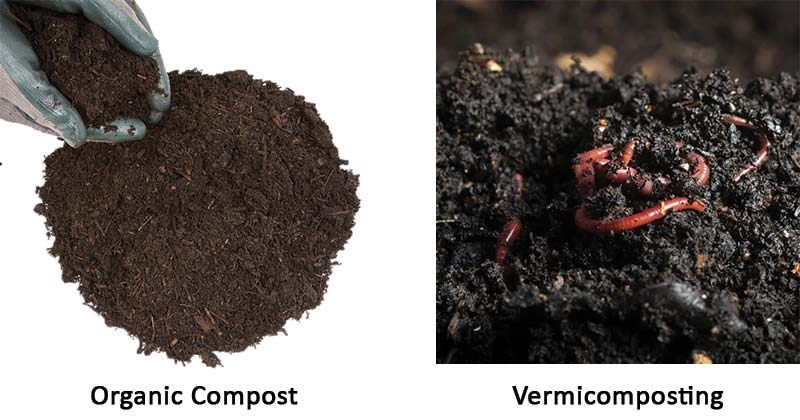 Organic Compost and Vermicomposting