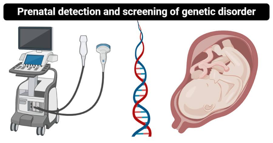Prenatal detection and screening of genetic disorder