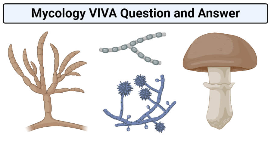 Mycology VIVA Question and Answer
