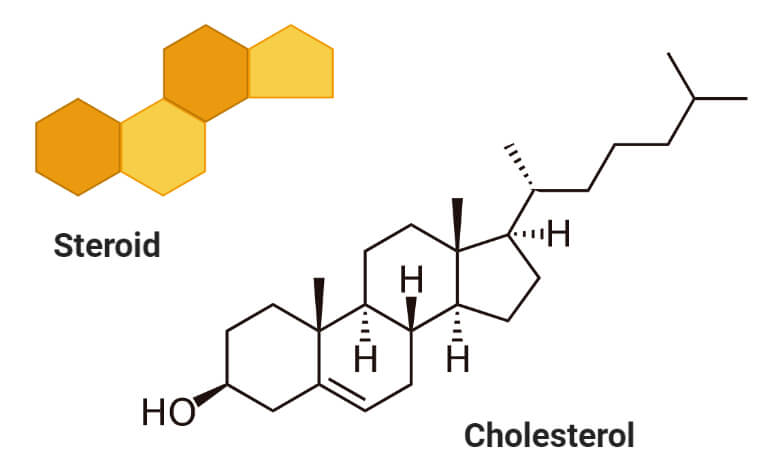 Sterols (Cholesterol)